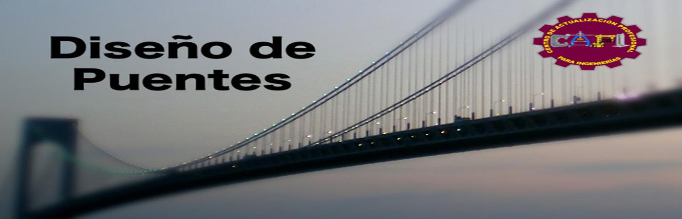 d_puentes1