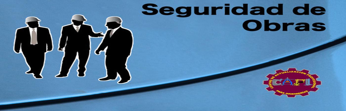 d_seguridadobras1